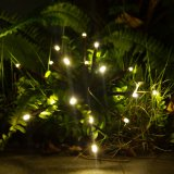 LEDの屋内ストリングはFirewroks装飾的なライトをつける