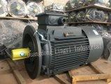 Serien-Niederspannungs-hohe Leistungsfähigkeits-elektrische Induktions-Motor Siemens-Beide
