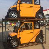 automobile elettrica della persona 4000W 4 con approvato dalla CEE