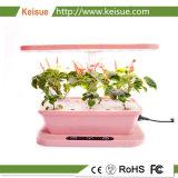 Keisue 낮은 힘 테이블 Hydroponic 성장하고 있는 기계