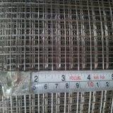 塗られた電流を通された/PVCは金網のパネルを溶接した