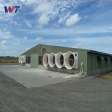 Galvanizado en caliente de prefabricados de estructura de acero de la luz derramada de pollo de granja de pollos de aves de corral con bajo coste