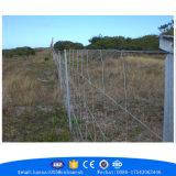 牧草地フィールド塀の伸張器のための動物の塀の金網