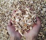 Vendita calda nella trinciatrice Chipper di legno dello sfibratore della macchina della Nuova Zelanda e dell'Australia 9HP