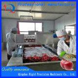 Macchina elaborante dei peperoncini rossi della polvere di peperoncini rossi dell'essiccatore del pepe