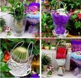 ВлагостойкmNs мешок втулки цветка пластичный упаковывать OPP