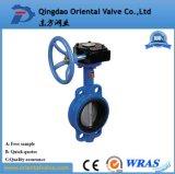 Fabrikant van China Dn80 voorzag Dubbele Zonderlinge Vleugelklep van een flens