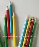 Crayon de couleur de demi de taille (SKY-025)