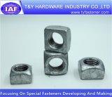 Haute qualité DIN557 écrou carré plaqué zinc blanc