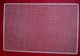 Des poissons grillés inoxydable Net (TS-E78)