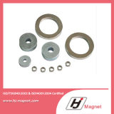 Krachtige Aangepaste N35 N52 Ring de Permanente Magneet van NdFeB/van het Neodymium voor Motoren