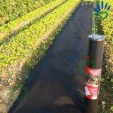 Maintenir la lutte contre les mauvaises herbes Non-tissée de tissu de paillis humide non-tissée