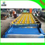 Крен плитки 1050 цветов стальной формируя машину для экспорта