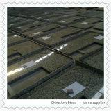 Controsoffitti dorati cinesi del granito per il progetto della cucina