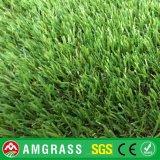 ماس مرح وعشب اصطناعيّة لأنّ حديقة ([أمف41625ل])