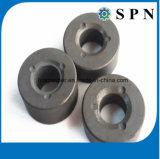 Anelli permanenti del magnete del ferrito per i motori di CC