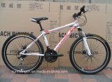 熱い販売のマウンテンバイクSR-GW34