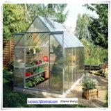 녹색 알루미늄 정원 온실