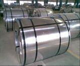 최신 담궈진 직류 전기를 통한 철 장 & 코일 또는 냉각 압연된 강철 코일