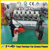 motor de gas natural 20-500kw (HL)