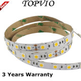 5050SMD 12V/24V Strip Light Bande LED