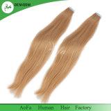Отсутствие путать отсутствие линяя бразильской ленты оптовой продажи волос девственницы волос в выдвижении человеческих волос