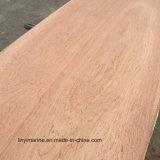 madera contrachapada del eucalipto de 15m m con base del álamo