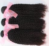 Estensione brasiliana dei capelli umani del Virgin di colore naturale crespo dell'arricciatura