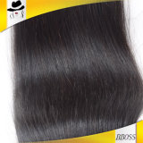 100% sans traitement en gros Virgin Brazilian Straight Hair