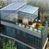 알루미늄 합금 프레임 물자와 강화 유리 지붕 물자 정원 보온성 일광실