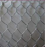 電子および熱い浸された電流を通された六角形の金網