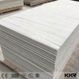 Het grote Blad van de Oppervlakte van de Steen van de Plak Witte Kunstmatige Acryl Stevige