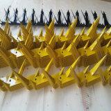 Гальванизированный защищенный спайк стены птицы (спайк птицы)