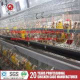 Usine de poulets de chair de volaille stable Direct Bird Cage de poulet pour la vente en gros