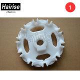 Hairise 800 Injuction-Kettenrad für Förderanlagen-Systems-modularen Riemen