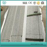 Plakken van Granity van het Graniet van China de de Goedkope Grijze G602 & Monumenten van Tegels, Countertop