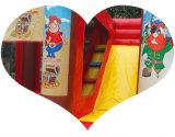 """Настраиваемые малых ПВХ надувные прыжком дом для детей"""" на День Рождения"""