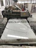 Scala di marmo con la pedata di marmo con il bordo di lucidatura piano