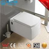 Tocador Pared-Colgado de cerámica de Luxrious de la certificación del Ce con el armario de agua Bc-2395