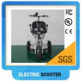 3 Rad-elektrischer Roller mit behindertem Sitz