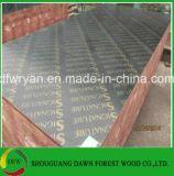 madera contrachapada de la construcción de 12m m