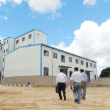 moulin du blé 50t/D particulièrement pour l'exportation