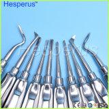 10PCS/lote Dental Elevador muito Dente de extração minimamente invasiva bastante Produtos de Toucador