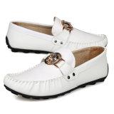 高品質の人の革靴の余暇の靴(FTS1019-28)