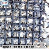Maglia ad alto tenore di carbonio della piegatura della rete metallica dello schermo di estrazione mineraria