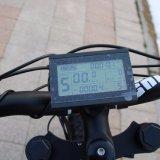 [1000و] 19 بوصة - عال سرعة إطار العجلة سمين كهربائيّة [موونتين بيك] رخيصة رجل شاطئ طرّاد درّاجة