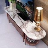 현대 로즈 금 스테인리스 커피용 탁자