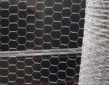 20gauge galvanisiertes und schwarzes Vinylüberzogene Geflügel-Draht-Filetarbeit
