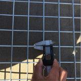 Elektro- und heißes eingetauchtes galvanisiertes geschweißtes Maschendraht-Panel