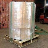 Riem 335kg van het Huisdier van de Rol van het Niveau van de machine de Jumbo per Broodje